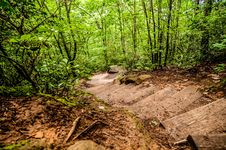Things You Find On A Hiking Trail Stock Photography