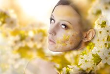 Free Pretty Young Woman Portrait With White Flowers Royalty Free Stock Photography - 32042487