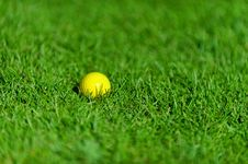 Free Golf Ball On Green Grass Stock Images - 32047624