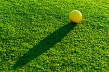 Free Golf Ball On Green Grass Stock Images - 32048484