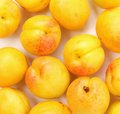Free Background Of The Big Juicy Ripe Apricots Stock Photos - 32051183