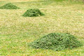 Free Haystack In The Field Royalty Free Stock Photos - 32059678