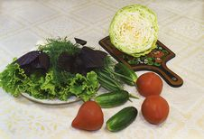 Free Lettuce, Dill, Onions And Vegetables: Tomatoes, Cucumbers, Cabba Stock Photography - 32056082