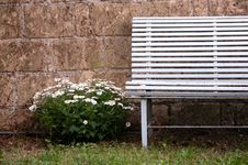 Free Vintage Bench With Flawers Royalty Free Stock Image - 32072176