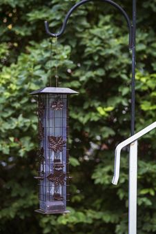 Free Bird Feeder Royalty Free Stock Photography - 32073247