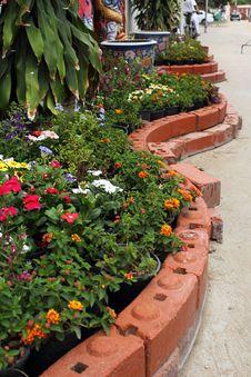 Free Flower Garden Stock Images - 32078124