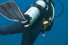 Free Scuba Diver Stock Images - 32078814