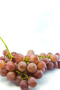 Free Red Grapes. Royalty Free Stock Photography - 32089467