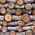 Free Stump Royalty Free Stock Image - 32097996
