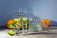 Free Tequila And Citrus Fruits Royalty Free Stock Photos - 32091698