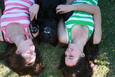 Free Smiling Dog Royalty Free Stock Photo - 3213455