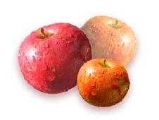 Three Color Apples Stock Images