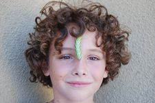 Free Tobacco Horn Worm On Nose Stock Photography - 3214612
