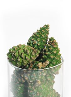 Pine Cones In Glass Bowl Royalty Free Stock Photo