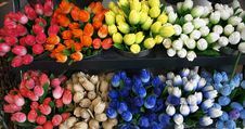 Colorful Wooden Tulips Royalty Free Stock Photo