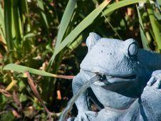 Free Frog Fountain Stock Photo - 3216110