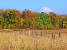 Free Barbwire Fence In Autumn Royalty Free Stock Photography - 3216117