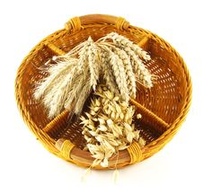 Free Crop In Basket Royalty Free Stock Photography - 3216597