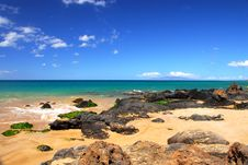 Free Rocky Shoreline By The Sea Stock Image - 3216871
