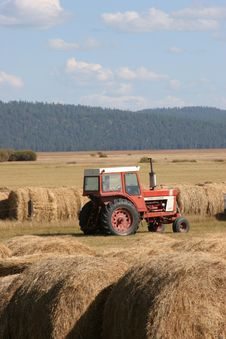 Free Tractor And Hay Harvest Stock Images - 3216954