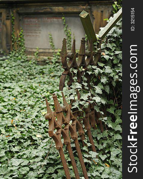 Old graveyard fence
