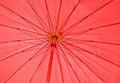 Free Red Umbrella Royalty Free Stock Photos - 32120158