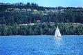 Free White Sailboat Stock Photo - 32126690