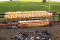 Free Grilled Chicken And Pork Loin On A Spit Royalty Free Stock Images - 32131269