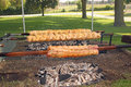 Free Grilled Chicken And Pork Loin On A Spit Stock Photography - 32131422