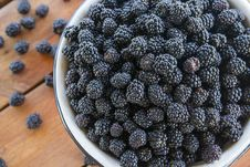 Free Many Blackberries In A Metal Bowl Royalty Free Stock Photos - 32163008