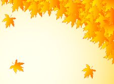 Free Background In Warm Colors With Yellow Maple Leaves. Royalty Free Stock Photos - 32173288