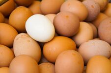 Free A Lot Of Eggs Stock Photo - 32174200