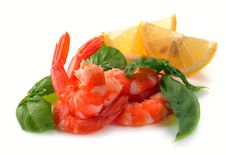 Free Simple And Basil Of Shrimp Stock Photography - 32178552