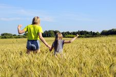 Free Child In Summer Wheat Field. Royalty Free Stock Images - 32185309