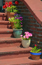 Free Flowerpots On Old Stairs Royalty Free Stock Photos - 32192228
