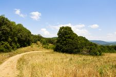 Free Unpaved Road In A Field Stock Photo - 32198940