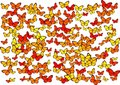 Free Butterflies Royalty Free Stock Photo - 3228655