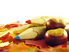 Free Chestnuts And Color Pencils Stock Images - 3220444