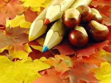 Free Chestnuts And Color Pencils Royalty Free Stock Photos - 3220498