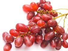 Free Grapes Royalty Free Stock Images - 3220499