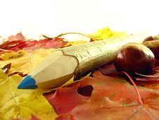 Free Chestnuts And Color Pencil Royalty Free Stock Photography - 3220527