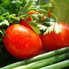 Free Red Tomato Stock Images - 3220694