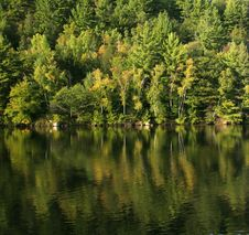 Free Autumn Lake Reflection Royalty Free Stock Photography - 3221347