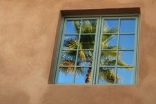 Free Reflection Of Palm Stock Photo - 3221810