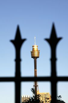 Free Sydney Tower Stock Photography - 3222742