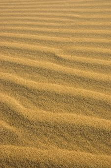 Free Waves Of Sand In The Desert Royalty Free Stock Photo - 3228395