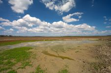 Free Meadow With Small Water Pond Royalty Free Stock Photography - 3228407
