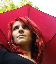 Free Rain Stock Image - 3228651