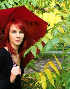 Free Red Umbrella Stock Photos - 3229083