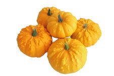 Free Bunch Of Ornamental Squash Stock Photo - 3229360